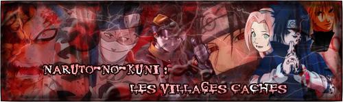 Naruto-No kuni : Les Villages Cachés