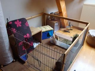 le terrier des lapins afficher le sujet vos. Black Bedroom Furniture Sets. Home Design Ideas