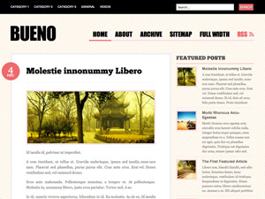 bueno10 How to make wordpress for blog, Free Woo Themes for Wordprss
