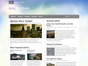 metamo10 How to make wordpress for blog, Free Woo Themes for Wordprss