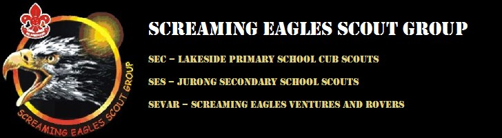 Screaming Eagles Scout Group