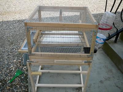 exemple de cage pour trio de cailles. Black Bedroom Furniture Sets. Home Design Ideas