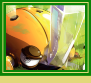 Ecraseur de Scarabosse Doré