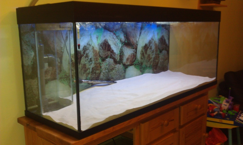 Vend aquarium juwel rio 400 meuble filtre dep 59 for Vend aquarium